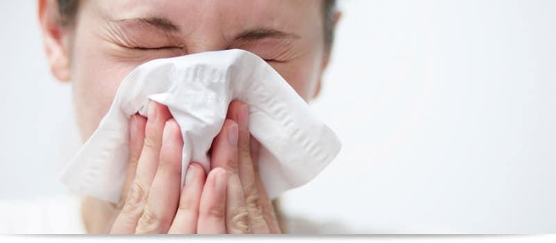 milbopax-hausstaubmilben-allergie-header
